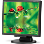 Monitor second hand Nec LCD 175M 17 Inch