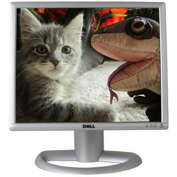 Monitor Dell 1901FP 19 inch 5 ms